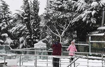 Snowfall hits Istanbul, Turkey