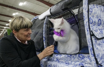 Cat show held in Vancouver, Canada
