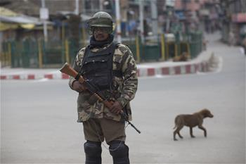 Paramilitary troopers stand guard during security lockdown in Indian-controlled Kashmir