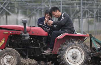 Pic story: couples with master degree build eco-friendly farm in China's Jiangsu