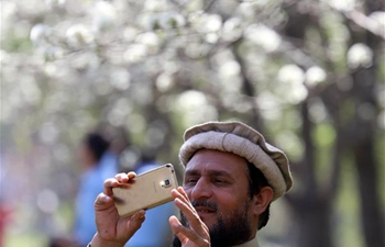 People enjoy view of blooming flower trees in Islamabad, Pakistan