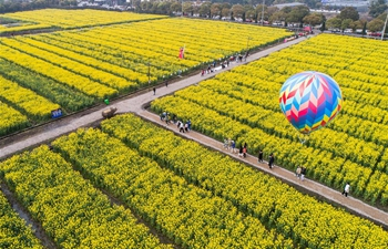 Cole flower tourism festival kicks off in Huzhou, east China's Zhejiang
