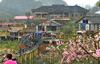 In pics: Peach flower fair in central China's Hunan