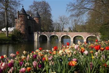 Flower festival Floralia Brussels attracts visitors in Belgium
