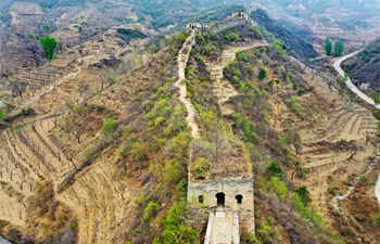 In pics: Qingshan'guan Pass of Great Wall in north China's Hebei