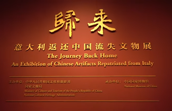 Chinese cultural relics returned from Italy on display