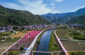 Rose garden becomes rural tourist destination in Hangzhou, China's Zhejiang