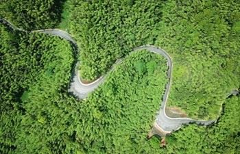 Upgraded mountain roads help people raise income in Chishui, SW China