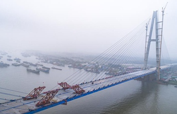 Qingshan Yangtze River Bridge finishes closure in Wuhan