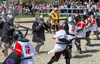 World championship of medieval combat held near Kiev, Ukraine
