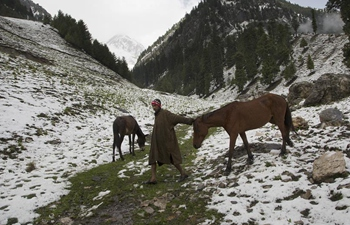 In pics: snowfall in Sonmarg, Indian-controlled Kashmir