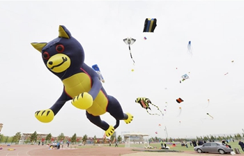 Kite flying contest held in Baotou, China's Inner Mongolia