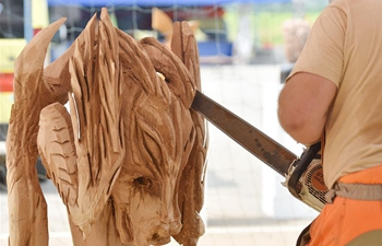 5th Chainsaw Carving Festival held in Salinovec village, Croatia