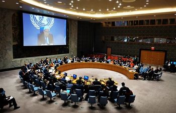 UN Security Council condemns Houthis for misappropriation of humanitarian aid in Yemen