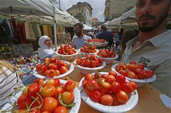 In pics: Cherry Day in Hamana, Lebanon