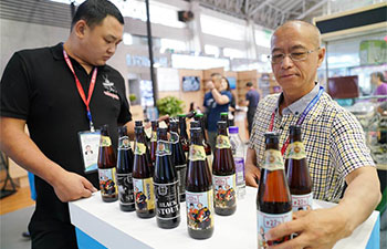 Over 1,300 enterprises attracted by China-Russia Expo