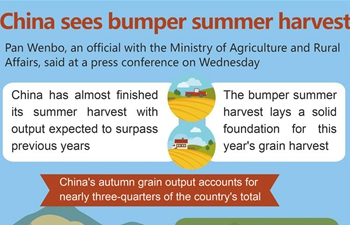 China sees bumper summer harvest