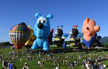 Hot air balloon festival held in China's Taiwan