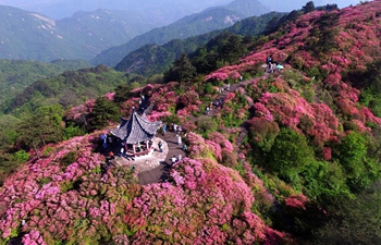 """Hubei Day"" event held at Beijing International Horticultural Exhibition"