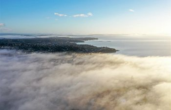 In pics: fogs floating over Auckland, New Zealand