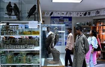 In pics: taxidermy museum in Bangladesh's central Tangail district