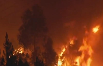 Portugal fire: Over 1,000 firefighters tackle blaze, seven reportedly hurt