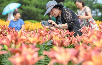 Lily of Changchun Park attracts lots of visitors