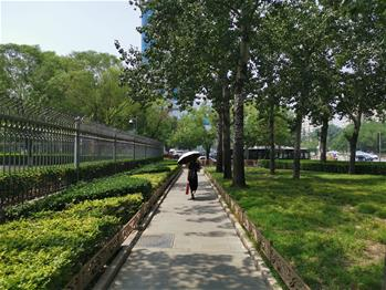 Scenery of small park in Beijing
