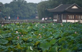 In pics: West Lake in Hangzhou, east China's Zhejiang