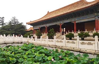 Summer scenery of Beijing