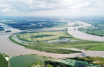 In pics: scenery of wetland in northeast China's Heilongjiang