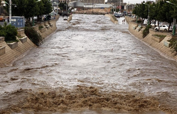Street flooded after heavy rain in Sanaa, Yemen