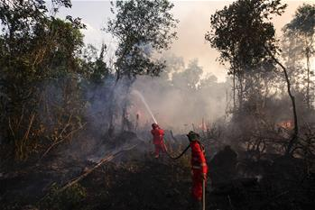 Firefighters try to extinguish fire in Ogan Ilir, Indonesia