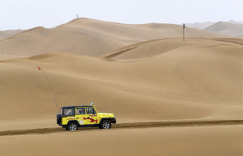 In pics: Shapotou desert-themed scenic spot in Zhongwei, NW China's Ningxia