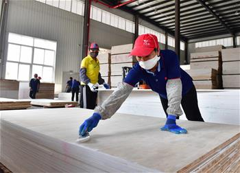 Employees work in Guangdong-Guangxi poverty relief cooperation industrial park