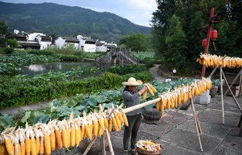 Farmers air corns in Huangshan, east China's Anhui