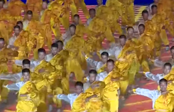 Stunning Kung Fu performances at opening ceremony of China's Ethnic Games