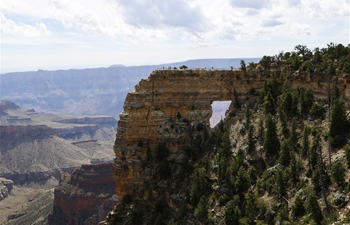 Scenery of Grand Canyon in U.S.