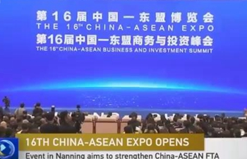 16th China-ASEAN Expo opens in S China