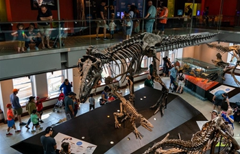 4th annual Dino Fest held in Los Angeles, U.S.