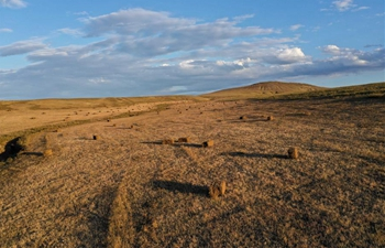 Scenery of grassland in Ar Horqin Banner of China's Inner Mongolia