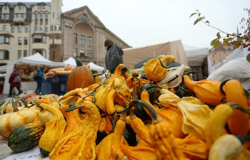 Autumn Harvest Festival held in Riga, Latvia