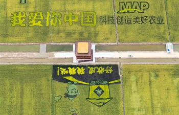 Aerial views show harvest across China
