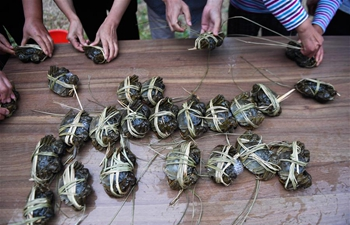 Crab-binding competition held to mark harvest season of Chinese mitten crabs in Zhejiang