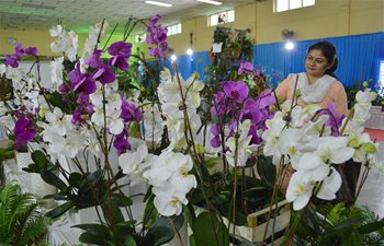 Orchid Show held in Bangalore, India