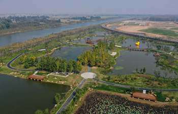 In pics: Fangwan Wetland Park in China's Jiangsu