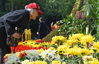 People enjoy chrysanthemums at park in Jinan, China's Shandong
