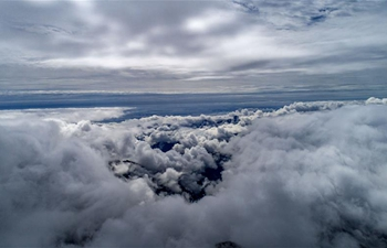 In pics: sea of clouds at Shennongjia National Park, China's Hubei