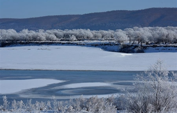In pics: rime scenery at Heilongjiang River in northeast China
