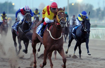 New horse racing season kicks off in Kuwait